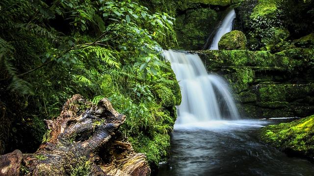 Caitlins Zuidereiland Nieuw-Zeeland